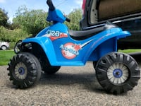 Electric toddlers quad