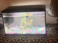 tank(filter), fish scooper Catonsville, 21228
