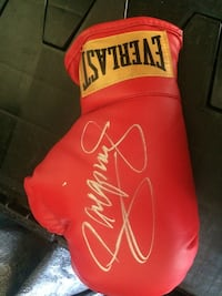 Red everlast boxing glove