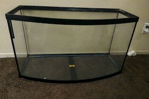 45 Gallon Bow Front Fish Tank