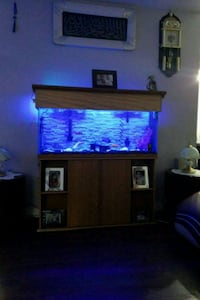55 gallon comes with everything  London, N6J 3R5