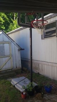 Offical MT DEW basketball hoop Richmond, 23237