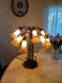 Tiffany style lilly lamp 12lights