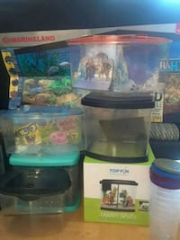 Beta tanks spongebob, Elsa and Anna and 2 others. Mississauga, L5G 3X5