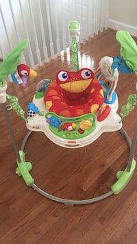 baby's Fisher-Price frog jumperoo Herndon, 20170