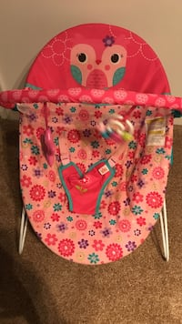 Baby's pink floral bouncer seat  *must pick up* Norfolk, 23513