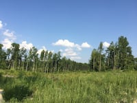 OTHER For sale Beaverdam