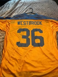 RARE Brian Westbrook authentic yellow/blue jersey Danville, 17821