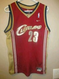 LeBron James's  Cleveland Jersey Chicago