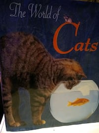The world of Cats  Nobleton, L0G 1N0