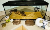 Like new cage with accessories and some extras Belleview, 34420