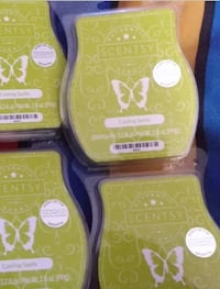 four Scentsy Casting Spells bars