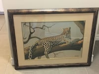 Lounging Leopard print by Clive Kay  St Catharines, L2M 7K7