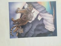 Cat and tiger pictures  Federal Heights, 80260