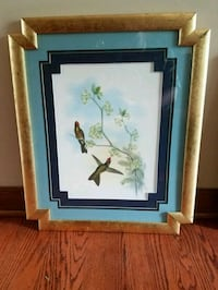 Framed Picture Hawthorn Woods, 60047