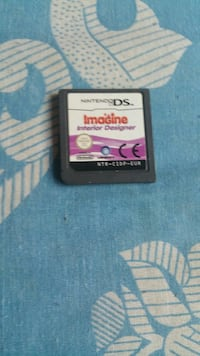 Nintendo DS Imagine el cartucho