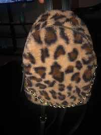 Small book bag Patchogue, 11772