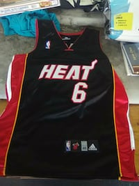 LeBron James Jersey heat 48 Ormond Beach