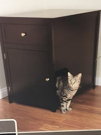 Cat box in end table/ nightstand