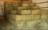 Square bales of hay Carthage, 39051
