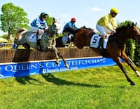Queens cup steeple chase