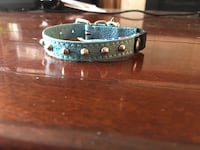 Studded snazzy Cat collar with elastic safety feature. Hamilton, L8H 2M8