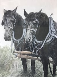 HORSE TEAM PENCIL DRSWING BY TERRY MADDOX Ripon, 95366