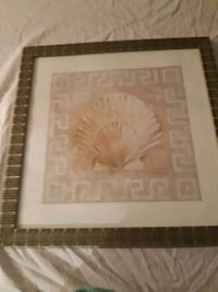 set of seashell pictures Coquitlam, V3K 6R6