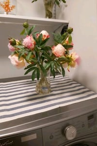 Beautiful pink flowers in a clear vase from home sense paid $49.95 Brampton, L6V 1K6