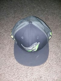 Snapback  Willoughby, 44094