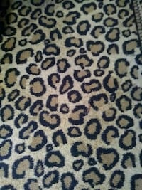brown and black leopard print textile Minneapolis, 55413