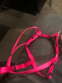 Xtra small harness  new