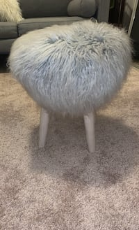 Fur stool Arlington, 22201