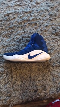 unpaired blue and white Nike basketball shoe Ankeny, 50023
