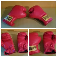 EVERLAST TRAINING BOXING GLOVES Bowie, 20715