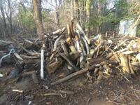 Free fire wood Corrales, 87048