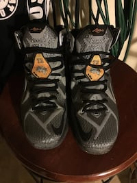 LeBron 12 size 9.5 Union City, 47390