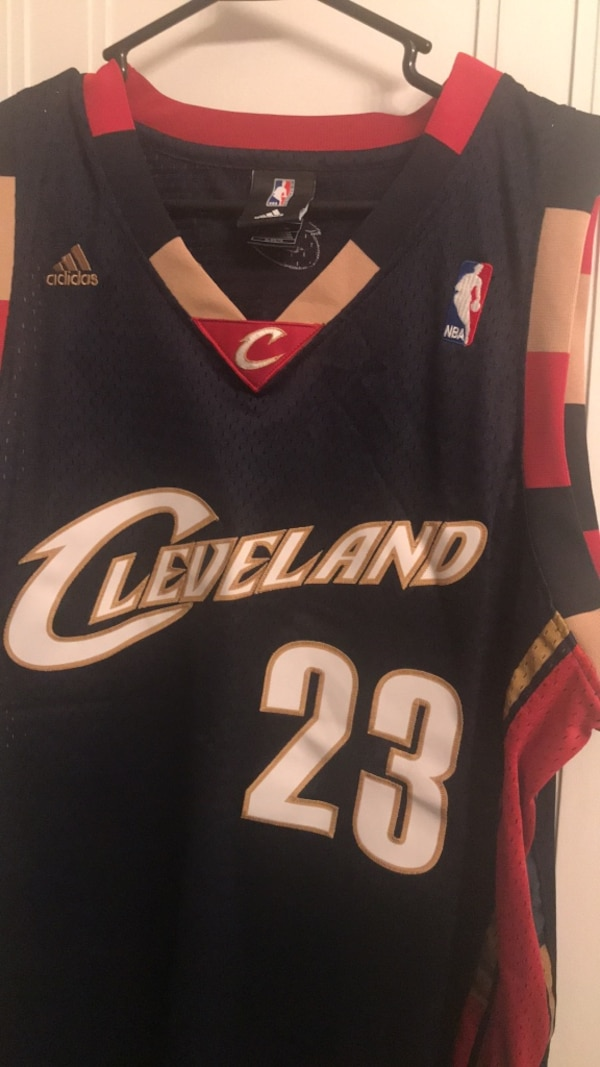timeless design 94f06 037ad LeBron James Navy Cavaliers Jersey