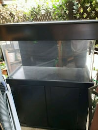 60 gallon acrylic tank w/ black stand and hood Los Angeles, 91331