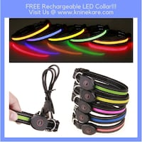 Rechargeable LED Collar  Houston, 77055