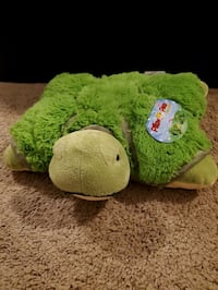 Turtle Pillow Pet