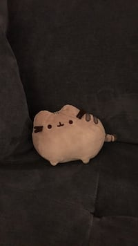 Adorable Pusheen Stuffed Animal Los Angeles, 90016