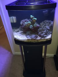 10 Gallon Nano Saltwater Fish Tank Ashburn, 20147