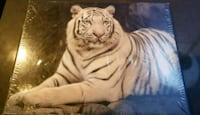 White Tiger hanging picture Toronto, M8Y 3K4