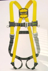 Miller Harness and Shock Absorbing Lanyard 6' $150