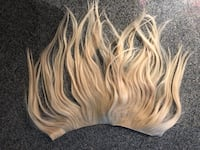 clip in hair extensions  Vancouver, V6B 0E9