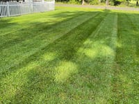 Lawn mowing/ fertilizing District Heights