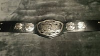 ECW title belt (youth size) FIRM PRICE