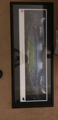 Carolina Panthers Bank of America Stadium Framed Picture Charlotte, 28210