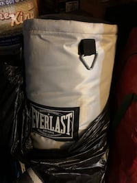 Everlast punching bag  Chicago, 60611
